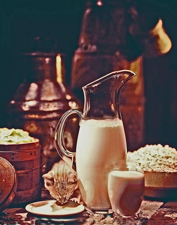 Milk - holyhollys