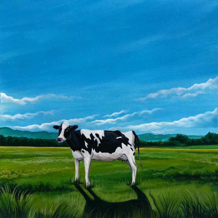 Cow - Aliah Montazeri