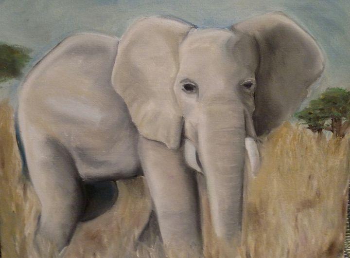 Elephant - Kate S