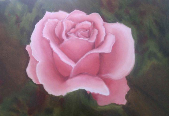 Pink rose - Kate S