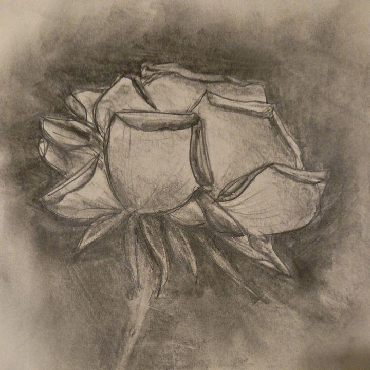 Turbulent rose - Kate S