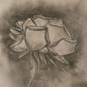 Turbulent rose