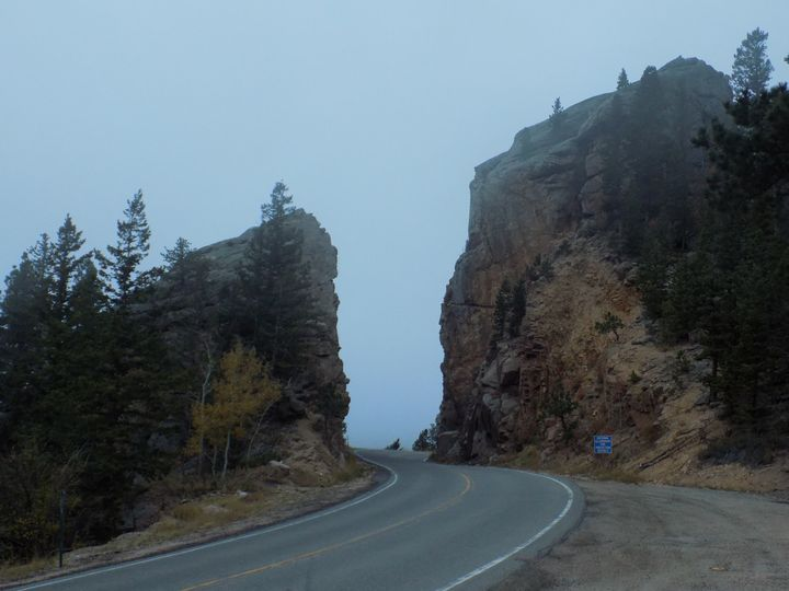 A Path Divided - Kodiak Prints