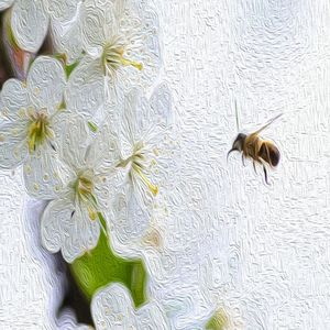 Busy as can Bee