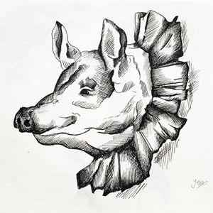 Pig in Ruffles - JJ Illustrations
