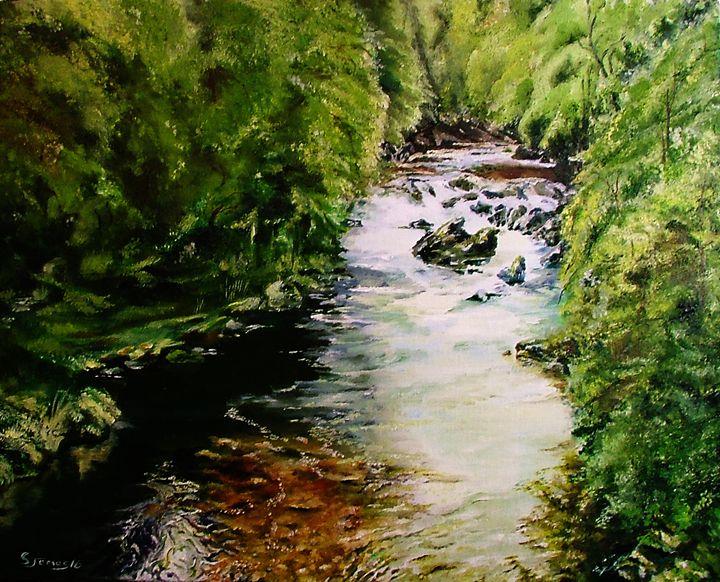 Hidden Stream - Steve James