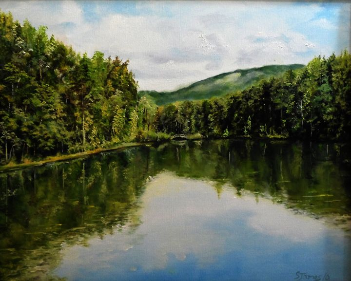 Reflections - Steve James