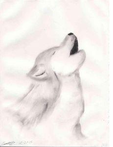 Soft Wolf