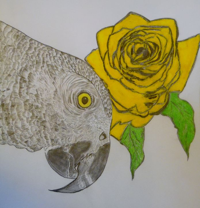 Yellow Rose and a Parrot - Nicole Burrell