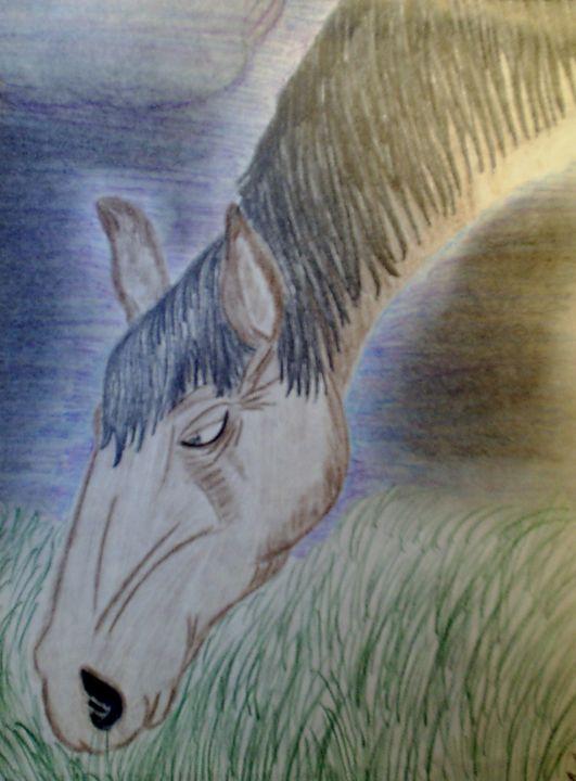 Brown horse - Nicole Burrell