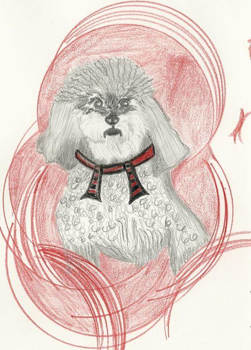 Scruffy little puppy - Nicole Burrell