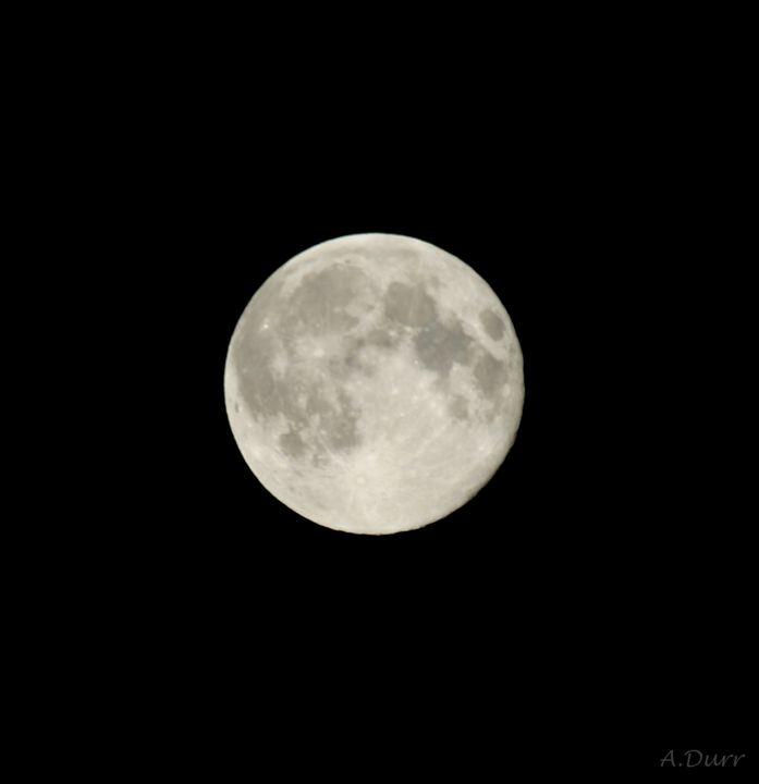 Hello moon - A.Durr