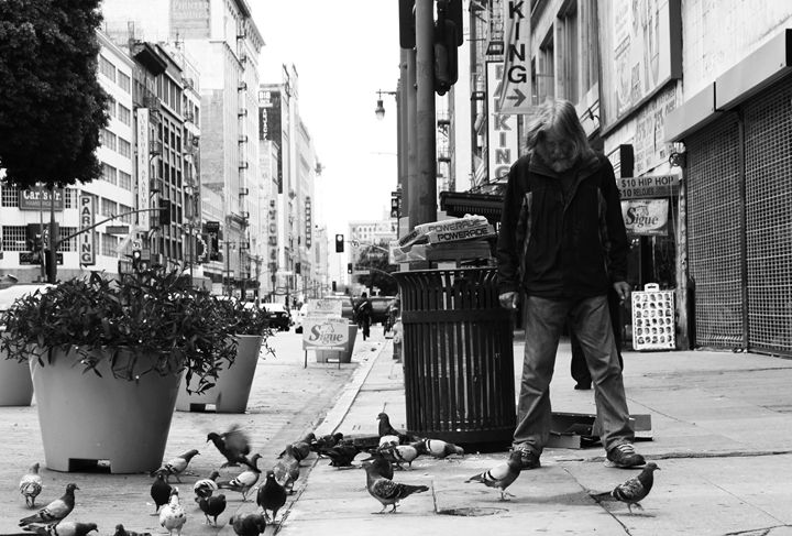 Pigeon Man - HarrisPhotos