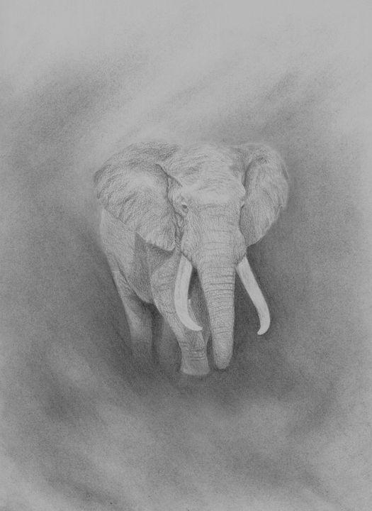 Elephant - Art By Paul S.