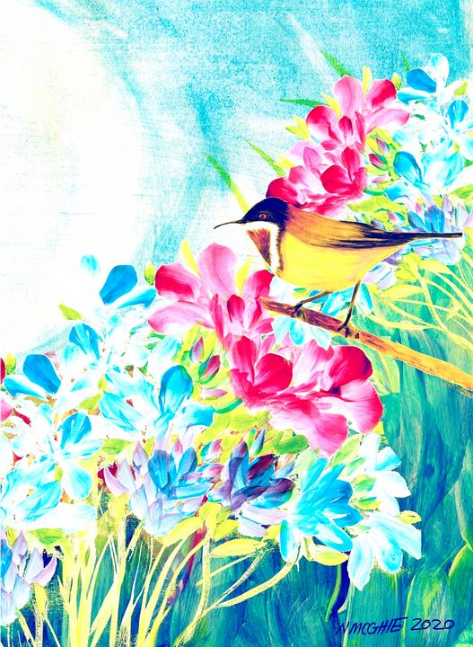 Morning Bird Song - N.M.O