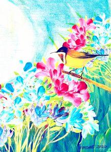 Morning Bird Song
