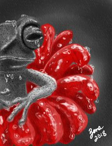 Stone Frog in the Rain