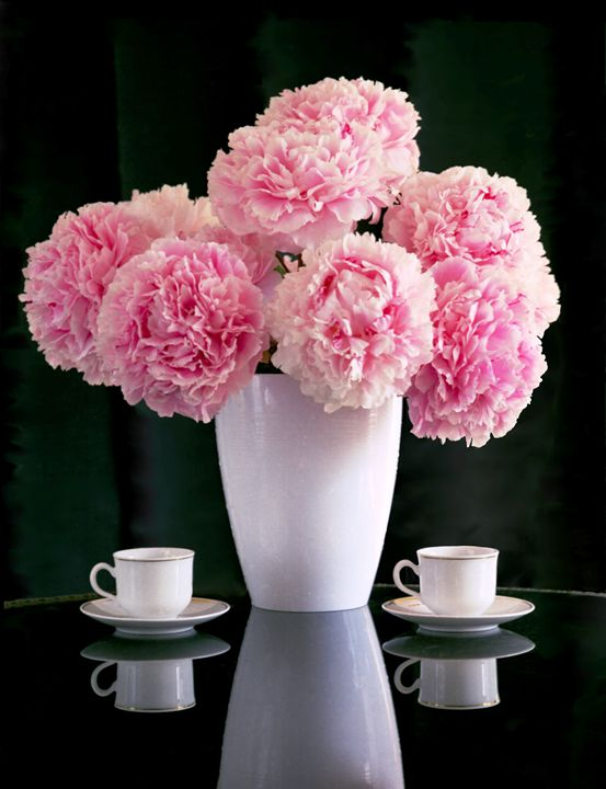 Still life with peonies and cups - peonynurserycom