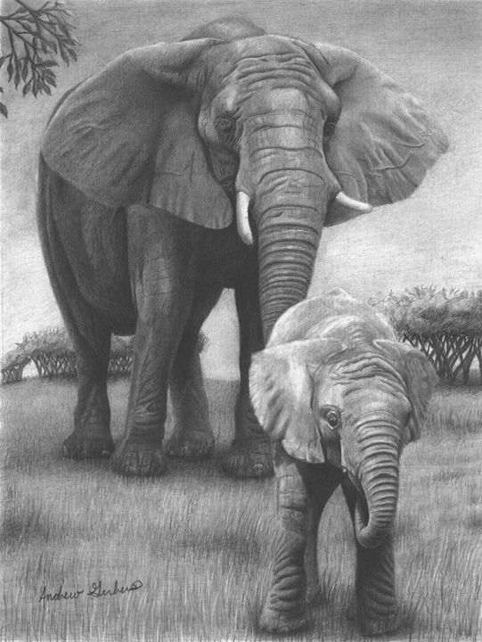 Elephants on the Grassland - Gerbers Fine Art