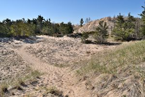 Ludington Sand Dunes