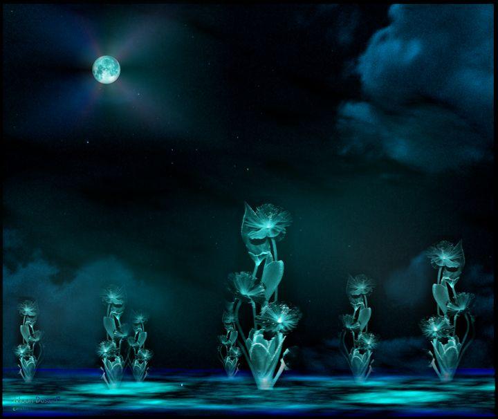 Moon Dusted - Rvrnova