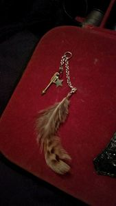 Star/feather earrings