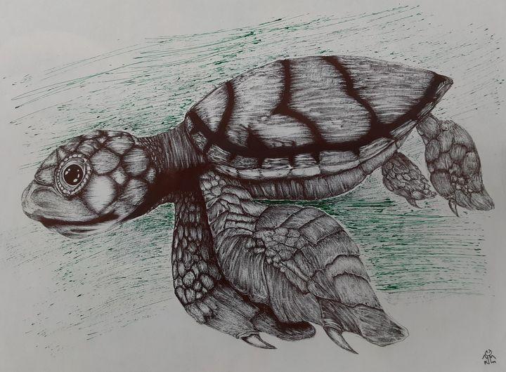Sea Turtle - Synefx Design