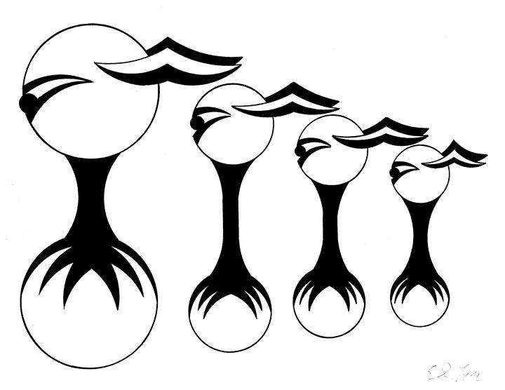 Birdballs - E.S.Locher