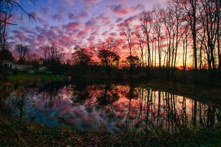 All the Colors - Janet MacFarlane Natural Photography