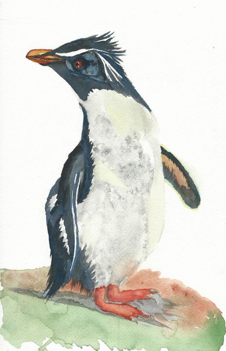 Rockhopper penguin - REV Originals