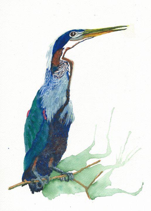 Agami heron - REV Originals