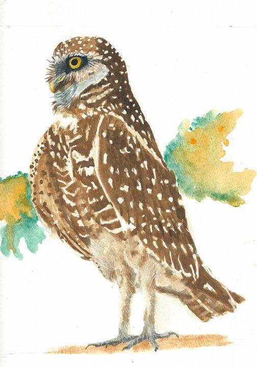 Borrowing owl - REV Originals
