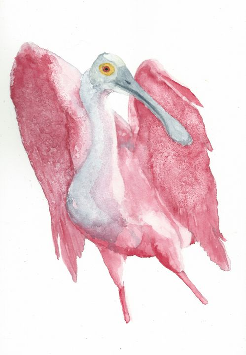 Roseate spoonbill - REV Originals
