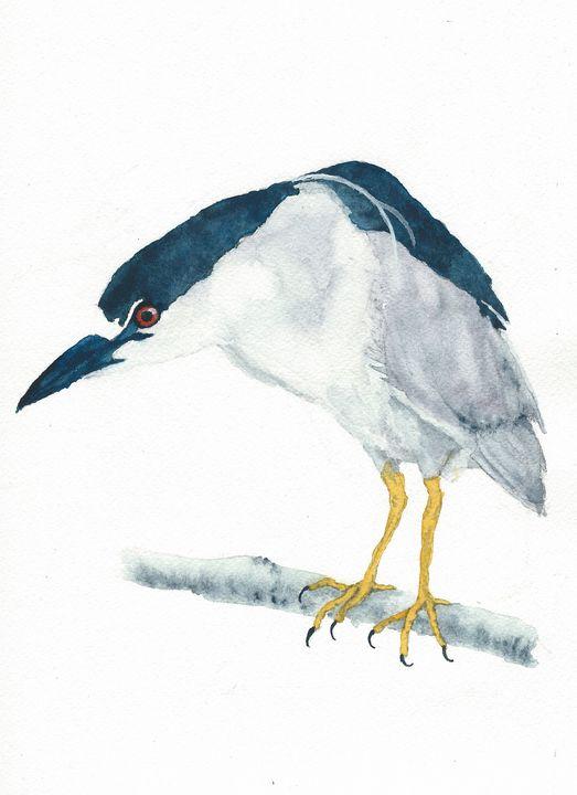 Black-crowned night heron 2 - REV Originals