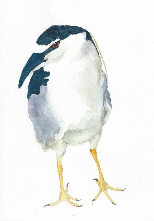Black-crowned night heron - REV Originals