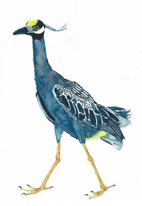 Yellow-crowned night heron - REV Originals