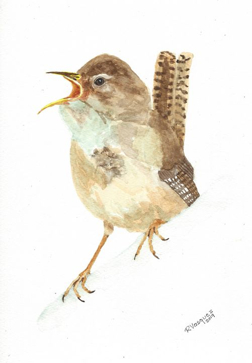 Carolina wren - REV Originals