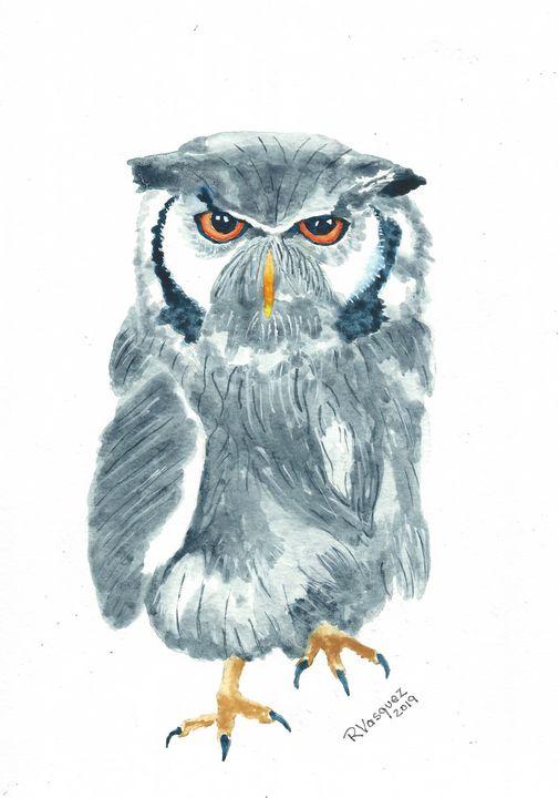 Northern white-faced owl - REV Originals