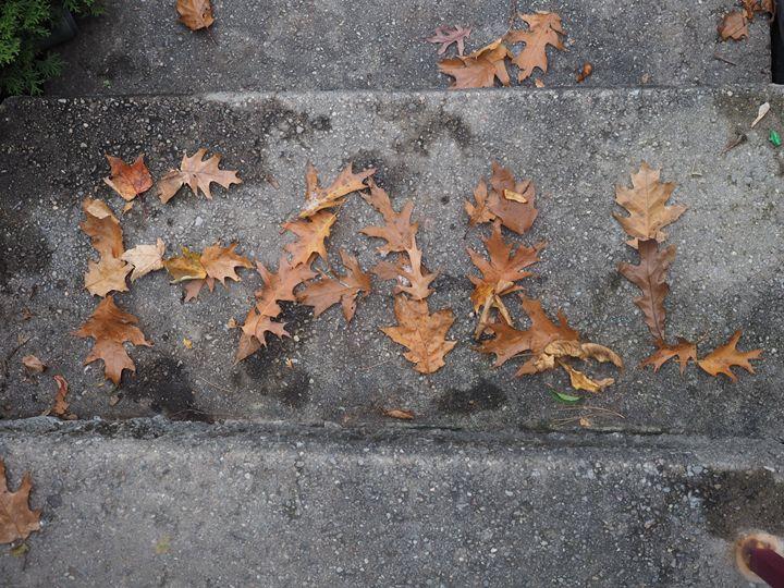 Fall - Liana