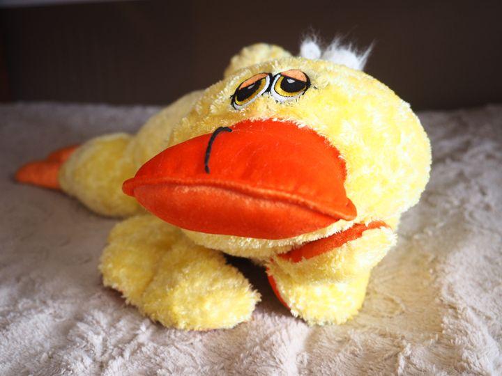 Duck Pose - Liana