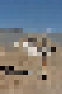 Alvord Desert #5