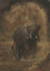 Dust Elephant