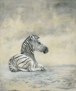 Manyara Zebra