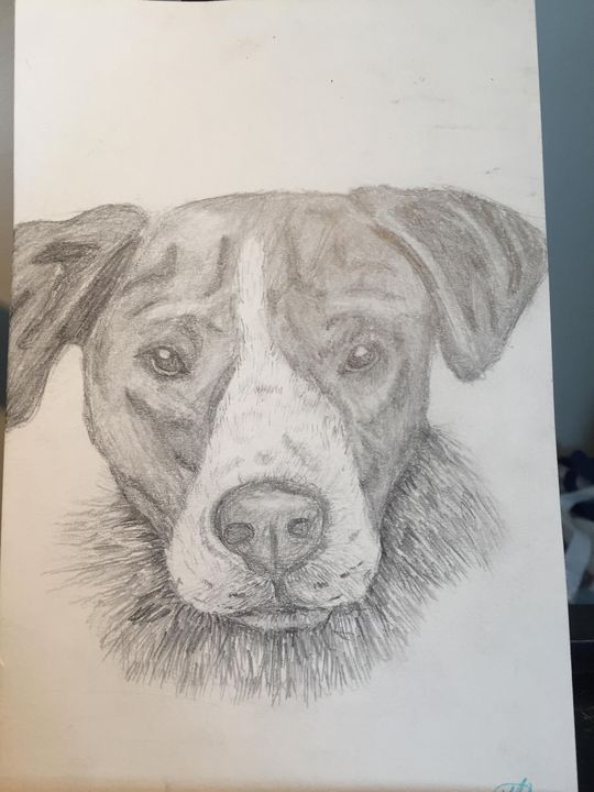 tough dog - Kristina's art