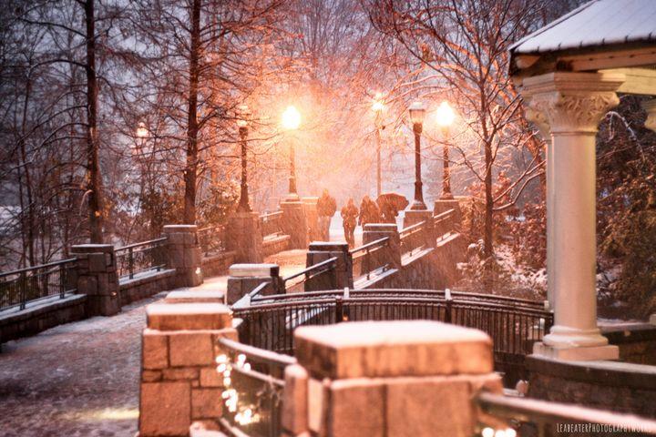 A winter Walk - LeabeaterPhotographyWorks