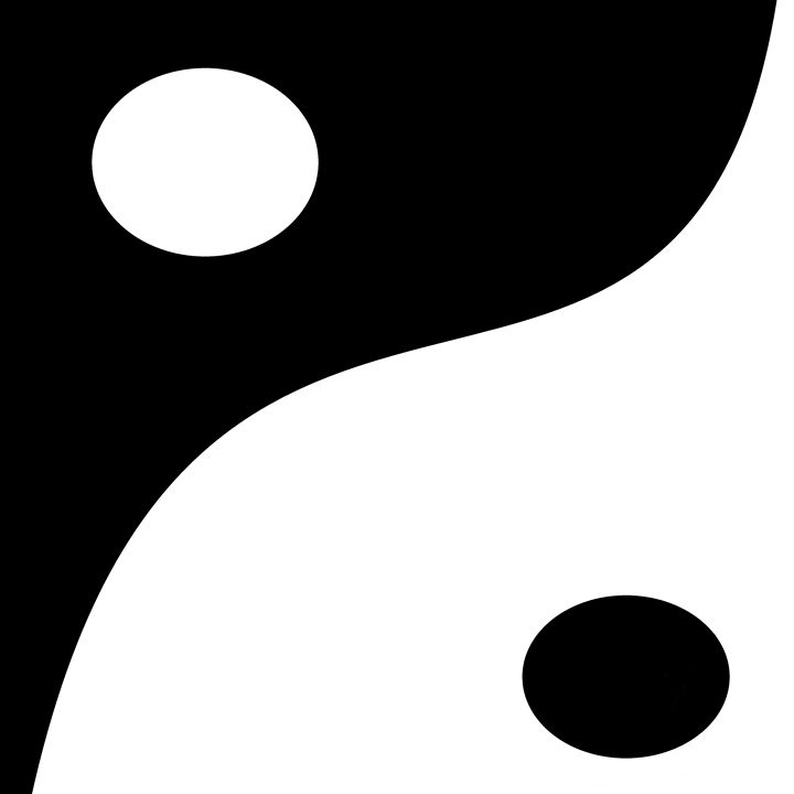 Yin Yang - Custom Art Decor