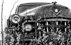 1949 Cadillac (3)