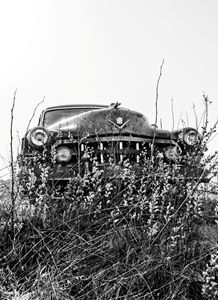 1949 Cadillac (4)