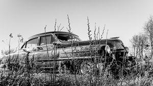 1949 Cadillac (1)