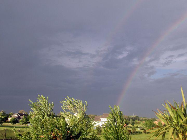 Double Rainbow - Kitty